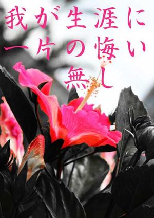 S0039_flower_003